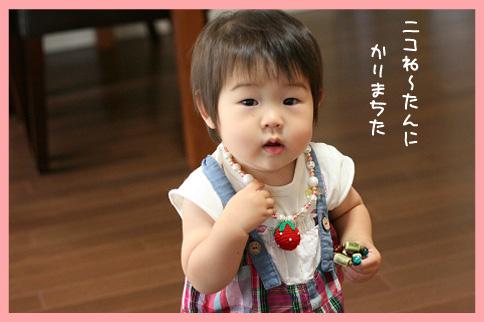 2009 07 29 さくらちゃんと水遊び blog03のコピー