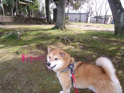 kyoufuubi1003213.jpg