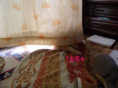oyasumi1002181.jpg