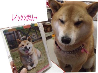 oyasumi1002182.jpg