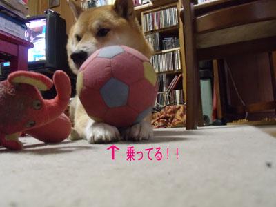 oyasumi1002186.jpg