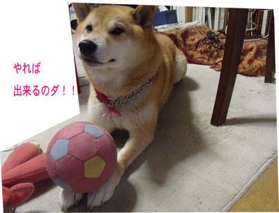 oyasumi1002187.jpg