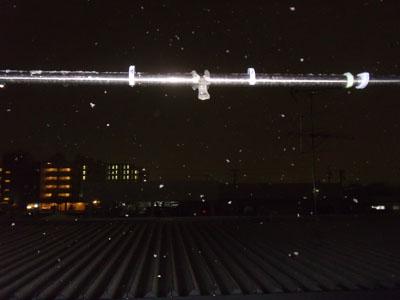 snow1002012.jpg