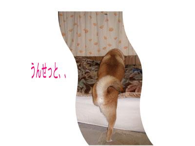 tasogare2003026.jpg