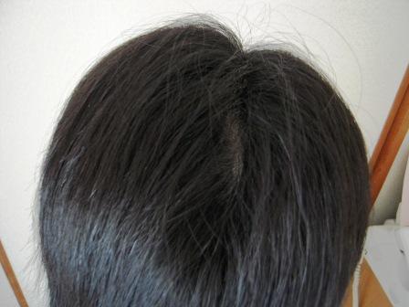 DSCN8540_20110629180916.jpg