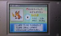 raichu_zukan.jpg