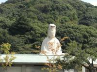 to_yasaka_2.jpg