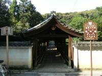 tofukuji_4.jpg