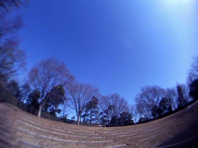 20110216v28.jpg