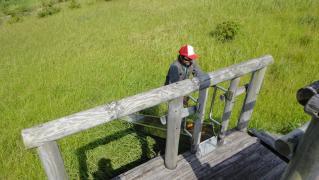 草刈り1101 033