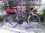 20090710b02.jpg