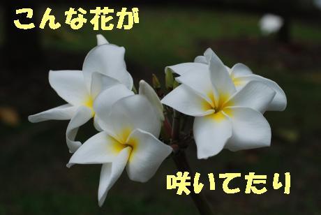 Us_DSC_0012.jpg