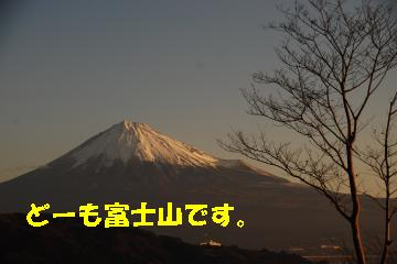 Us_DSC_0016.jpg