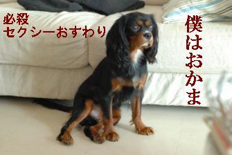 Us_DSC_0050.jpg