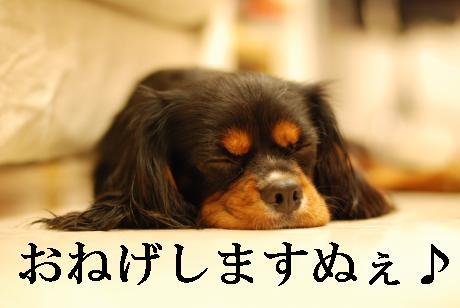 Us_DSC_0098.jpg