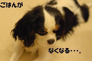 Us_DSC_0228.jpg