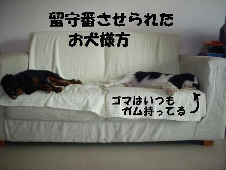 Us_IMGP1817.jpg