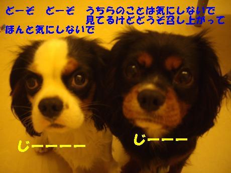 Us_IMGP1880.jpg