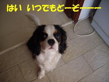 Us_IMGP2078.jpg