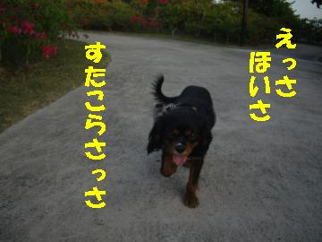 Us_IMGP2098.jpg