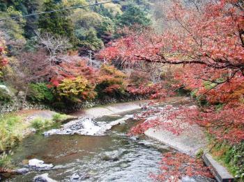 20091122比叡山 (4)