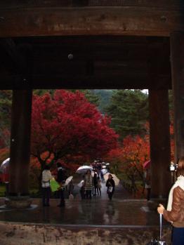 20101123 K4京都散策 (15)