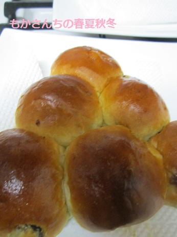 ぶどうパン1