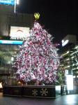 会社のツリー2008②