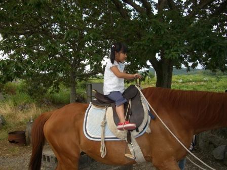 山口ツアー 秋吉台で馬にも乗ってみました