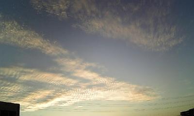今日の空はうろこ?