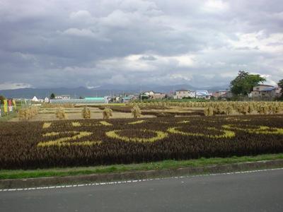 田んぼアート2009