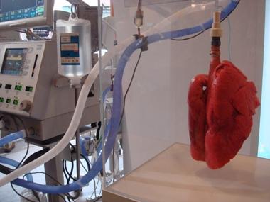 呼吸療法医学会3