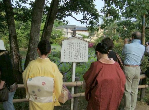 葵祭カキツバタ 089