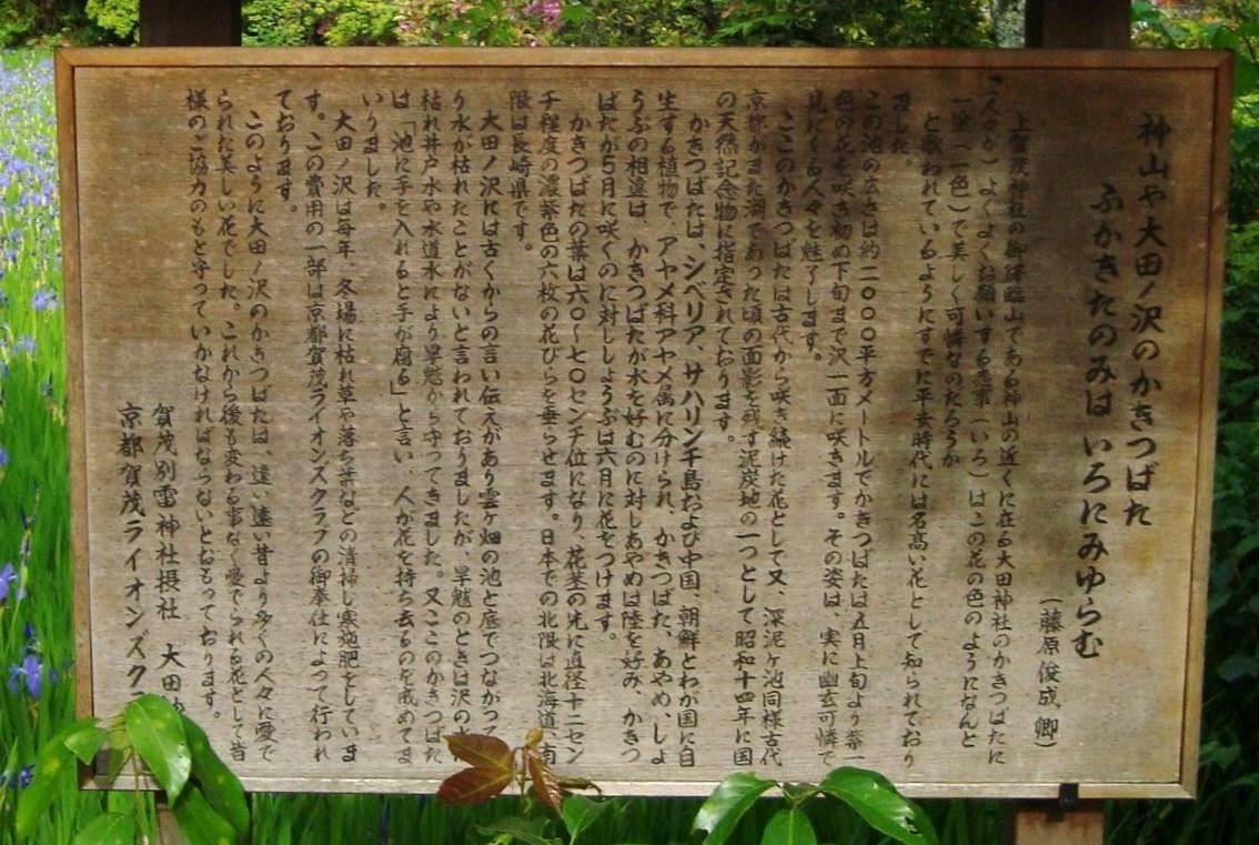 葵祭カキツバタ 086 (2)