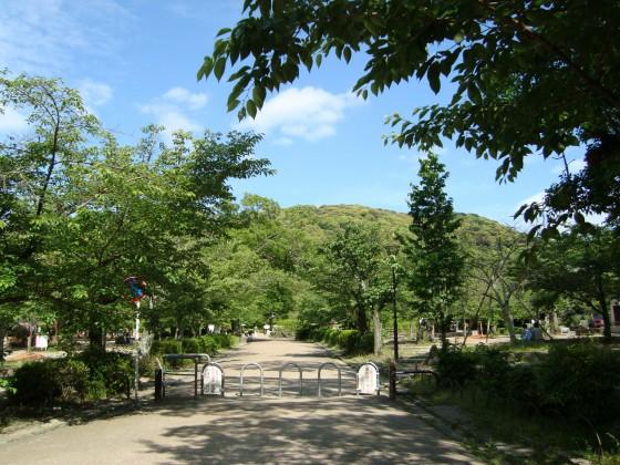 将軍塚2010 016