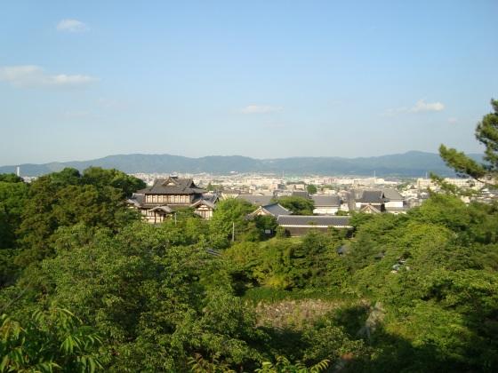 大和郡山矢田寺 164