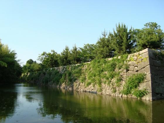 大和郡山矢田寺 129