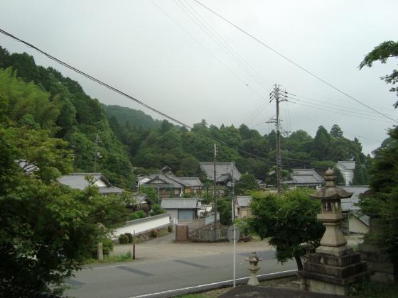 柳谷観音あじさい 002