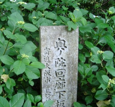 柳谷観音あじさい 068