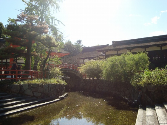 鴨川下鴨神社 097