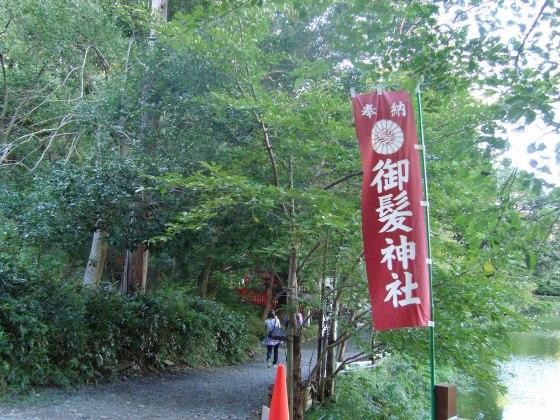 嵐山ふよう 075