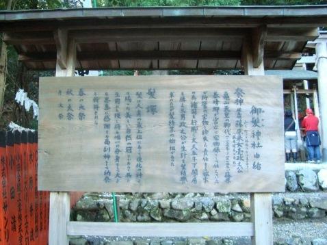 嵐山ふよう 064