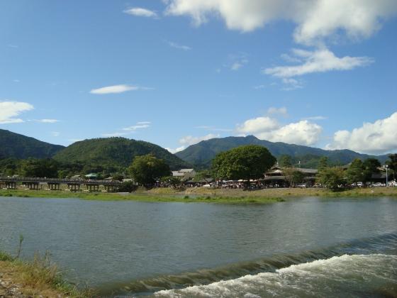 嵐山ふよう 011