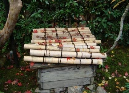 二尊院落柿舎紅葉 175