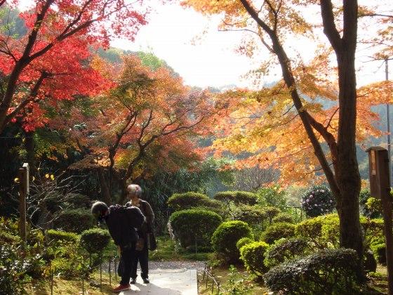 清水清閑寺紅葉2010 167