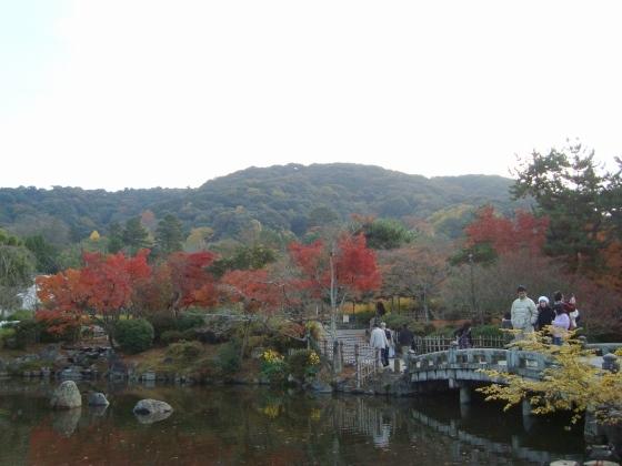 清水清閑寺紅葉2010 015