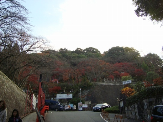 清水清閑寺紅葉2010 041