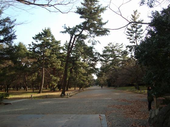 御所鴨川冬2010 030