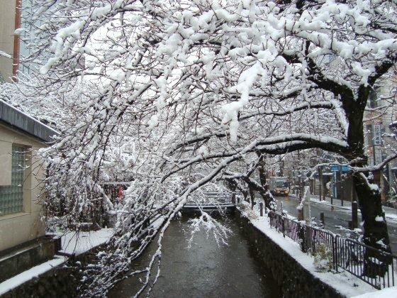 雪四条大晦日2010 040