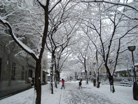 雪四条大晦日2010 058